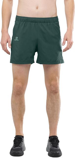Salomon Agile Spodnie krótkie 5